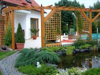Арка в саду — зеленый свод естественной красоты + фото