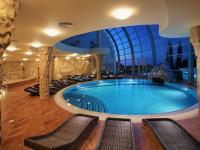 Интерьер бассейна для частного дома — 95 фото уникальных идей для роскошного дома мечты