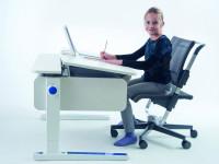 Письменный стол для школьника — как выбрать лучший и современный предмет интерьера (82 фото + видео)