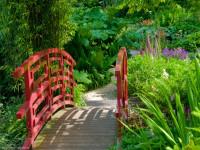 Садовые мостики — 79 фото восхитительных дизайнерских решений