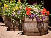 Уличные вазоны для цветов — 90 фото от самодельных до ультрамодных предметов декора