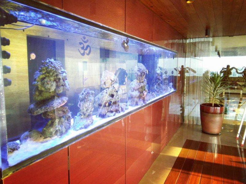 Akvariumyi v interere 14