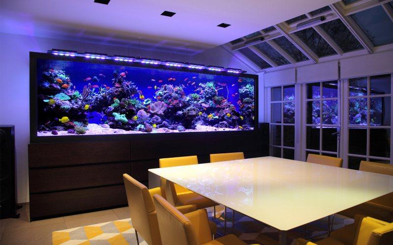 Akvariumyi v interere 23