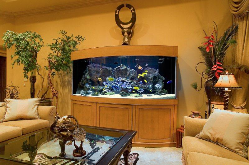Akvariumyi v interere 36