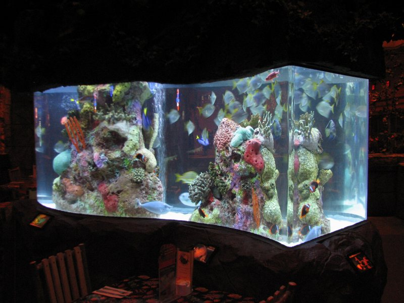 Akvariumyi v interere 38