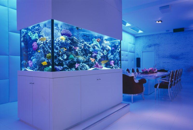 Akvariumyi v interere 48