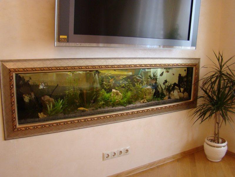 Akvariumyi v interere 53