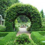 Arch in the garden 16