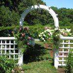 Arch in the garden 23