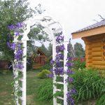 Arch in the garden 26