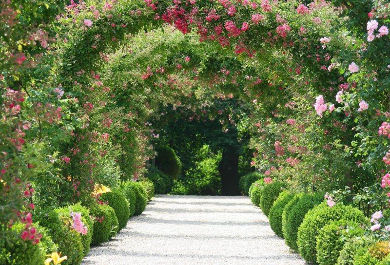 Arch in the garden 27