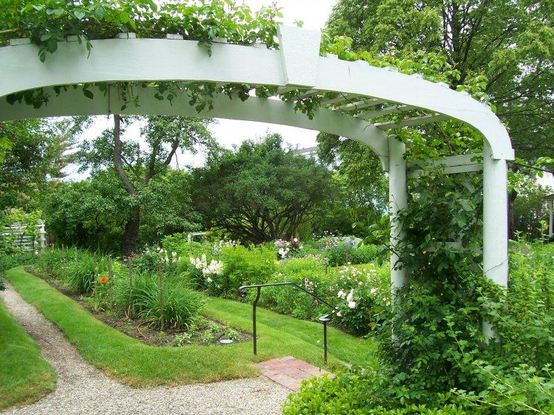 Arch in the garden 7