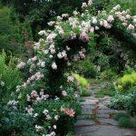 Arch in the garden 8