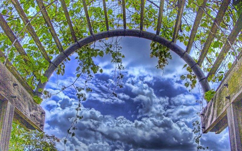 Arch in the garden 9