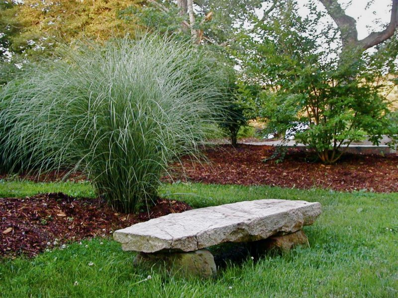 Garden benches 46