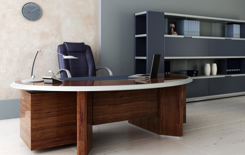 Interer kabineta 21