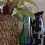 Vazyi v interere 1