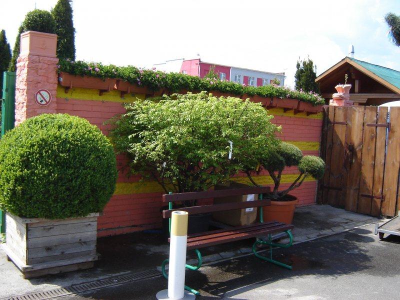 Vyirashhivanie tsvetov v konteynerah 49